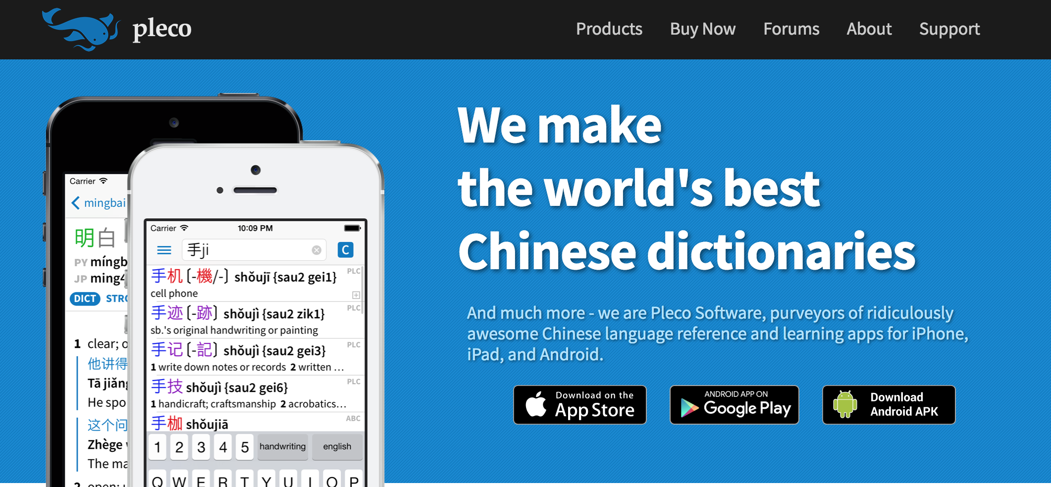 learning Chinese app dictionary